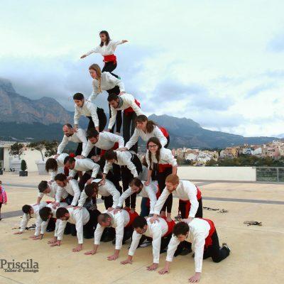 Escala falconera - La Nucia