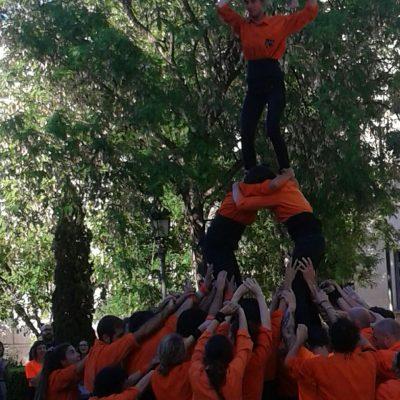 Remat net de la Xopera - Jove Muixeranga de València