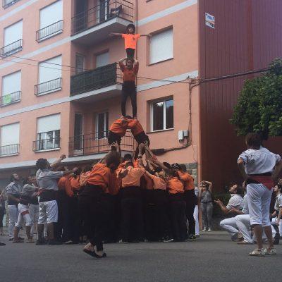 Torreta - Vinyoles